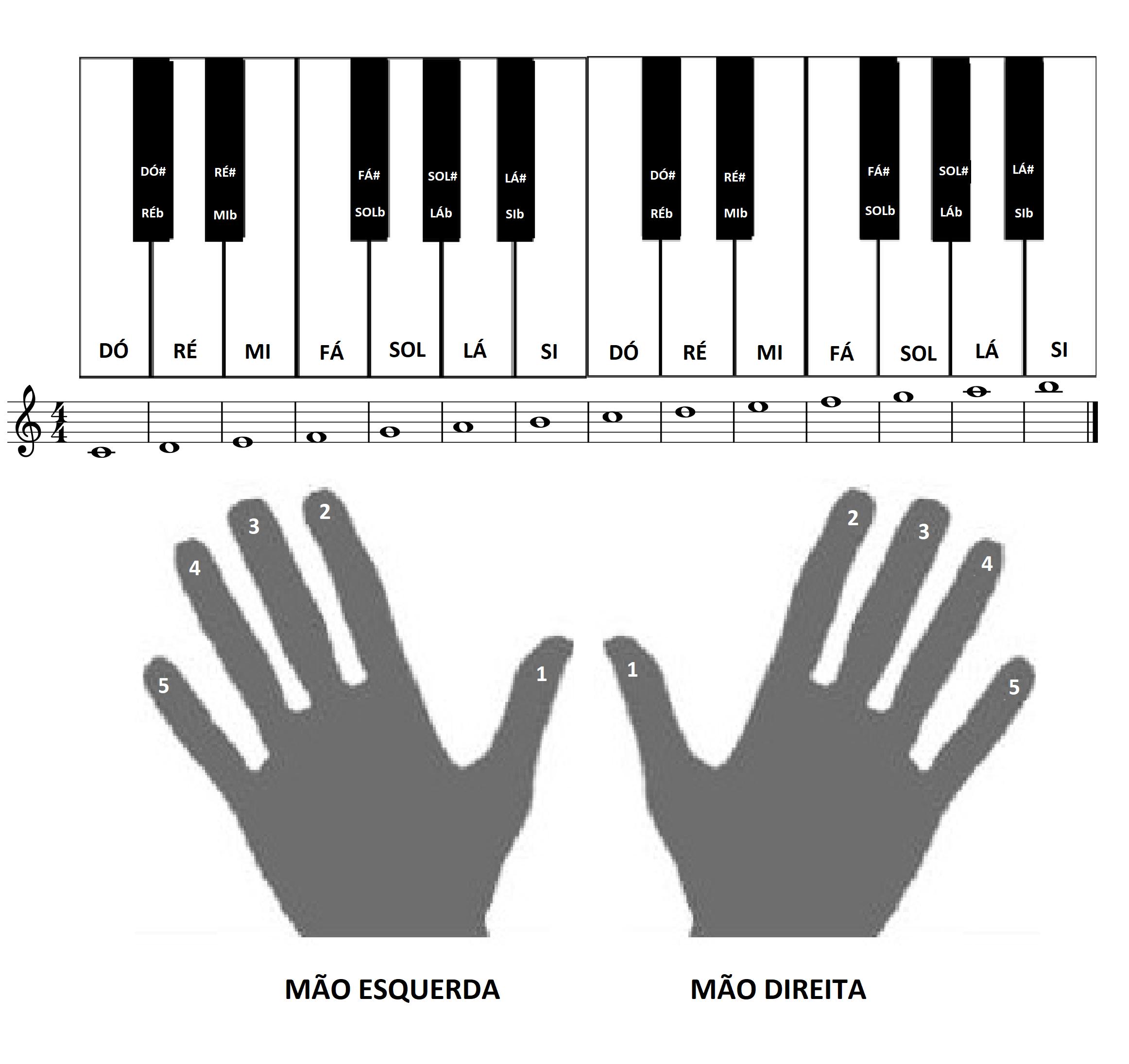 Notas Musicais No Teclado Curso Completo De Pedagogia